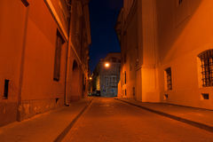 Vilnius street at night Stock Images