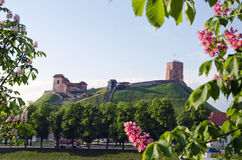 Vilnius symbol - historical castle and tower of Gediminas in spring, Lithuania. Oldest Vilnius symbol - historical castle and tower of Gediminas in spring royalty free stock photography