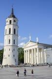 Vilniuskathedraal royalty-vrije stock foto's