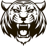 Vilt tigerhuvud royaltyfri illustrationer