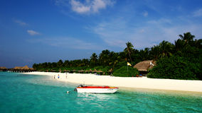 Vilureef island in maldives. Tropical island A pleasant climate Royalty Free Stock Photos
