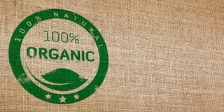Vimine senza cuciture organico Fotografia Stock Libera da Diritti
