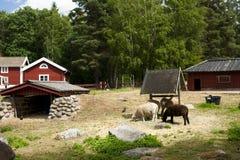 VIMMERBY SVERIGE - Juni 19, 2018 - världen för Astrid Lindgren ` s, Astrid Lindgrens Varld är ett nöjesfält fotografering för bildbyråer