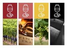 Vin Fotografering för Bildbyråer