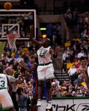 Vin Baker Boston Celtics Royaltyfri Bild