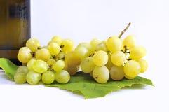 Vin blanc. Photo libre de droits
