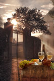 Vin blanc avec le baril dans le chianti, Toscane, Italie photo stock