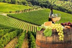 Vin blanc avec le baril sur le vignoble dans le chianti, Toscane, Italie photographie stock libre de droits