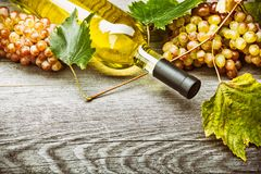 Vin blanc dans un verre avec des raisins de chute image libre de droits