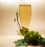 Vin blanc en verre Images stock