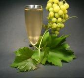 Vin blanc en verre sur le dos de noir Photo libre de droits