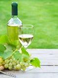 Vin blanc et raisin photographie stock libre de droits