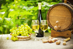 Vin blanc et raisins Image stock