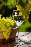 Vin blanc et raisins Photographie stock libre de droits