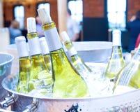 Vin blanc sur la glace Image libre de droits