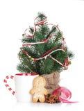 Vin brulé di Natale con l'albero di abete, il pan di zenzero e la decorazione Fotografia Stock