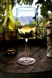 vin d'échantillon Photographie stock