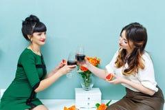 Vin de boissons de deux amies à la maison Photographie stock libre de droits