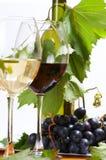 vin de composition Photo libre de droits
