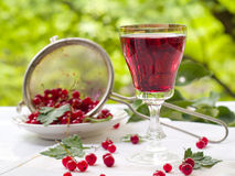 Vin de fruits photo stock