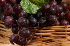 vin de lame de raisins Photographie stock libre de droits