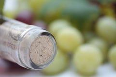 vin de raisins de bouteille Images stock