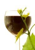 Vin en verre rouge Images stock