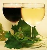 Vin en verre rouge et blanc Photo libre de droits