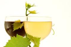 Vin en verre rouge et blanc Photographie stock