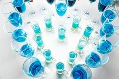 Vin en verres dans le restaurant Image libre de droits