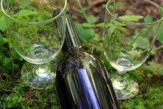 Vin et nature Photo libre de droits