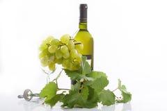 Vin et raisin Photographie stock