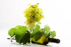 Vin et raisin Images stock