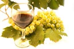 Vin et raisin Image stock