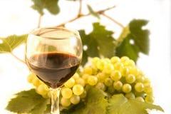 Vin et raisin Photo libre de droits