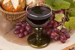 Vin et raisins Images stock