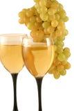 Vin et raisins Images libres de droits