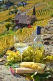 Vin et raisins photographie stock libre de droits