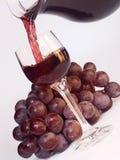 Vin et vigne Image libre de droits