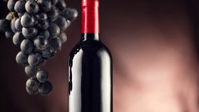 Vin Flaska av rött vin med mogna druvor royaltyfria foton