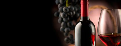 Vin Flaska och exponeringsglas av rött vin med mogna druvor royaltyfri bild