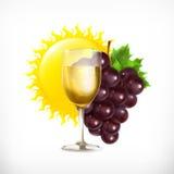Vin i exponeringsglaset med druvor och solen Royaltyfri Foto
