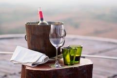 Vin i hink Arkivbild
