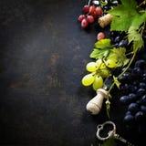 Vin och druva royaltyfri foto