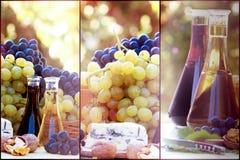 Vin och druva - sund mat- och drinkhöstskörd fotografering för bildbyråer