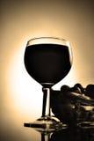 Vin och druvor Royaltyfria Bilder