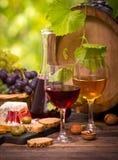 Vin och ost royaltyfri fotografi