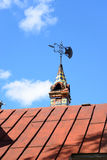 Vin op dak van de oude bouw Royalty-vrije Stock Afbeelding