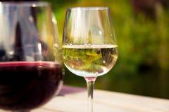 vin par la glace Photographie stock
