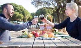 Vin potable de jeunes couples affectueux et parler sur le pique-nique Images stock